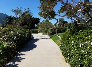Crescent Bay Point Park Laguna Beach California Event Request
